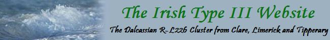 Irish Type 3 Website